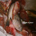 Zuppa di pesce: pesce da zuppa